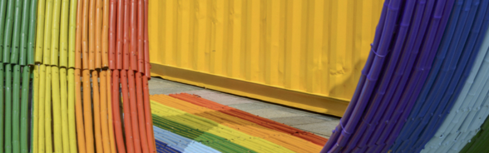 """Formation continue: """"Développer un milieu de travail inclusif: management de la diversité et droits LGBT"""""""